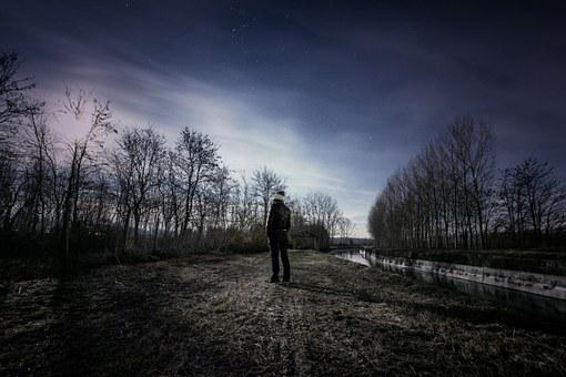 Man, Person, Sky, Stars, Observing, Watching, Astronomy