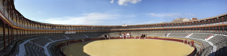 Panoramic, Plaza, Bulls