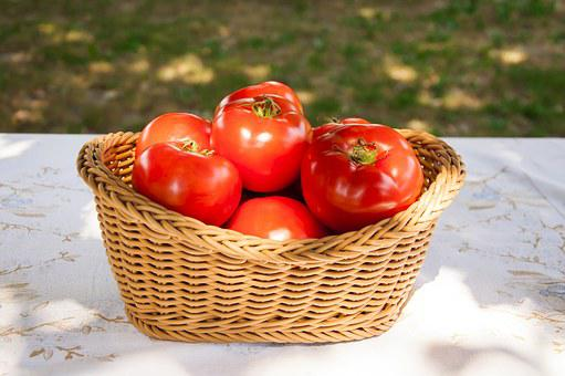 Fresh, Tomatoes, Basket, Tomato, Nature, Vegetable, Red