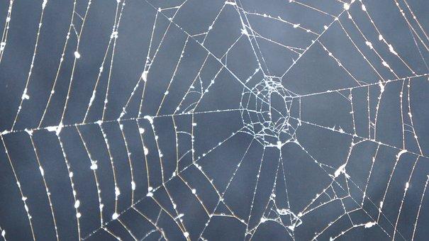 Cobweb, Dark, Smoke, Mystical, Mysterious, Halloween