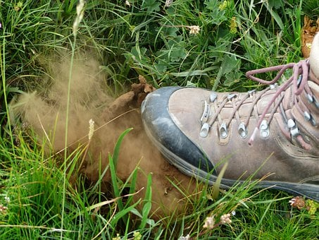 Bovist, Mushroom, Dust, Crush, Spores, Mountain Shoe