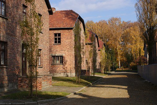 Auschwitz, Camp, The Fascists, The Nazis