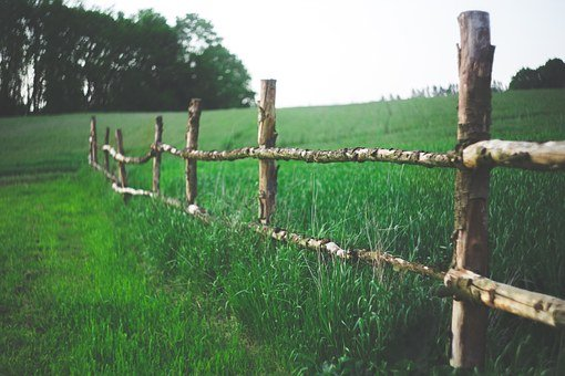 Field, Fence, Farm, Country, Green, Nature, Grass