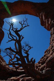 Arches National Park, Nature, Outdoors, Utah, Desert