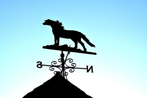 Horse, Pinwheel, Animal Husbandry, Sky, Blue, Farm
