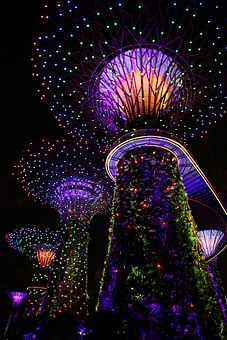 Garden By The Bay, Singapore, Musical Light, Tree