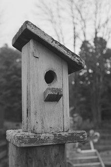 Birdhouse, Outdoor, Nature, House, Bird, Home, Wooden