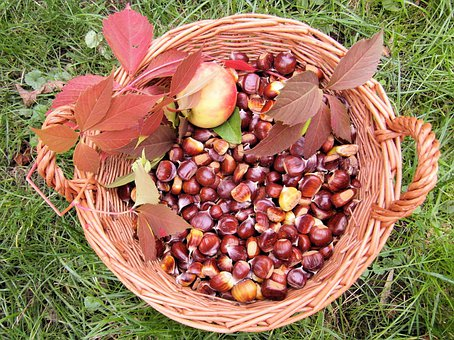 Maroni, Fall, Autumn, Sweet Chestnuts, Autumn Fruits