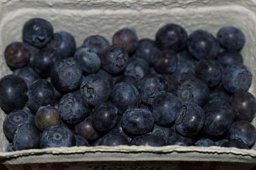 Blueberries, Berries, Shell, Blue, Fruits, Delicious