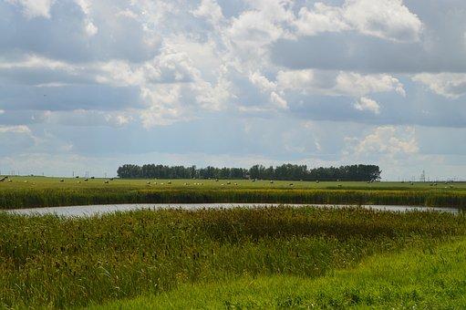 Prairie, Hay Bales, Sky, Grass, Creek, Nature, Clouds