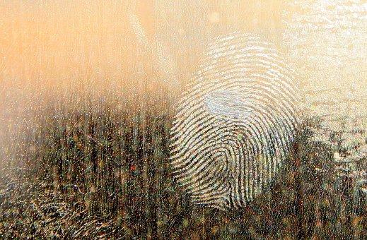 Dirt, Dirty, Fingerprints, Forensics, Glass, Grease