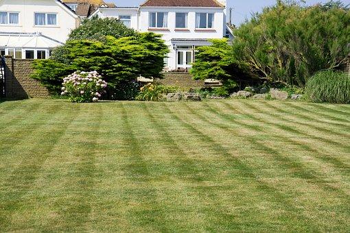 Grass, Lawn, Green, Mown, Mowed, Stripes, Garden
