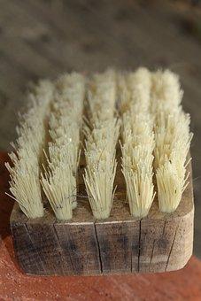 Brush, Bristles, Clean, Close, Striegel, Schuhbuerste