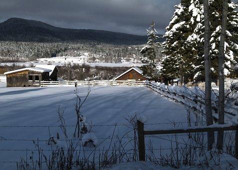 Winter, Scenery, Canim Lake, British Columbia, Canada