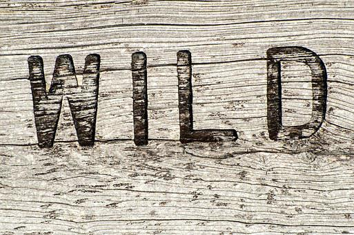 Wooden Sign, Wild, Rustic, Weathered, Sign, Wood