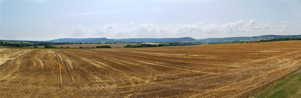 Panorama, Cornfield, Harvested, Vision, Rural, Hill