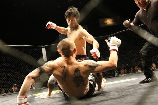 Mma, Mixed Martial Arts, Maza Fight, Maza, Japan