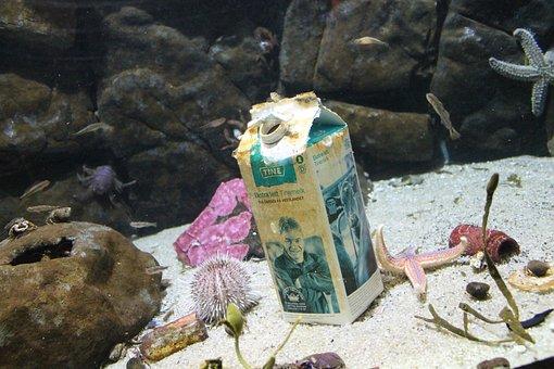 Sea, Beneath The Surface, Waste, Milk, Mess