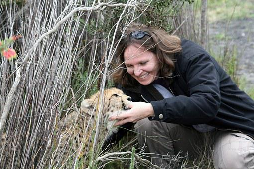 South Africa, Cheetah Cub, Suckle, Thumb, Woman
