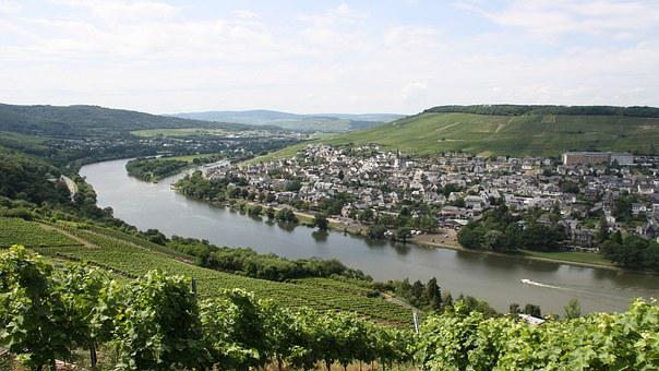 Mosel, Wine, Vineyard, Cask Of Mosel Wine, Winegrowing