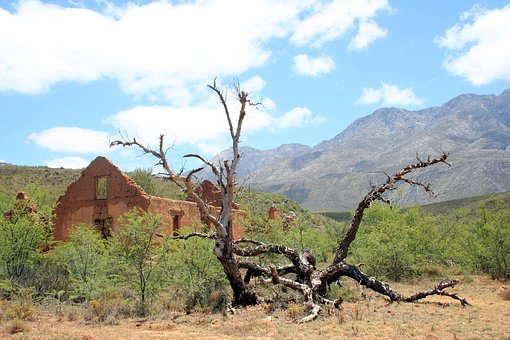 Ruin, Deadwood, Isolation, Karoo, Mountain, Cape