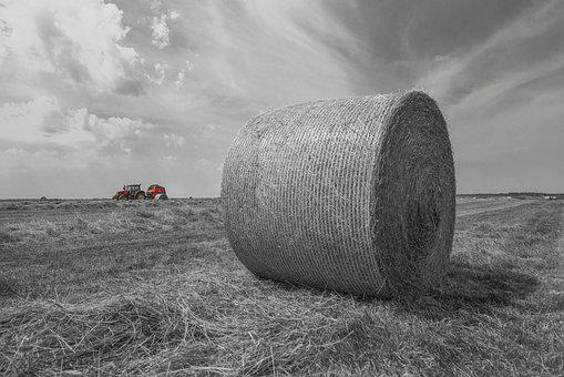 Hay Bales, Tractor, Harvest, Field, Mood, Sun, Nature