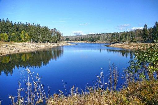Reservoir, Or Pond, Dam, Braunlage, Nature, Forest