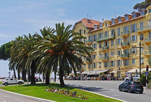 Nice, Place Guynemer, Cape, Port, Palm Trees