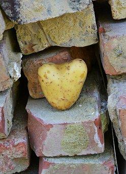 Heart, Potato, Love, I Like You, I Like Having You