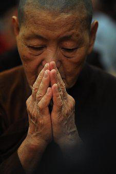Theravada Buddhism, Nun, Old, Aging, Pay Respect