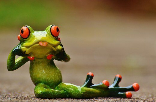 Frog, Fig, Funny, Cheeky, Stick Out Tongue, Cute