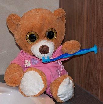 Bear, Teddy Bear, Stuffed Animal, Toys, Toothbrush