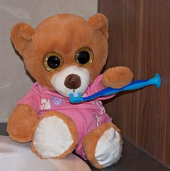 Bear, Teddy Bear, Stuffed Animal, Toys, Toothbrush