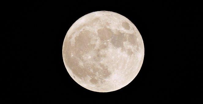 Luna, Super, Bright, November, Full Moon, Event