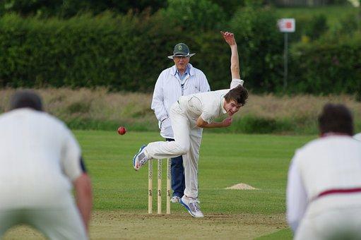 Cricket, Bowl, Field, Match, Pitch, Playing, Sport