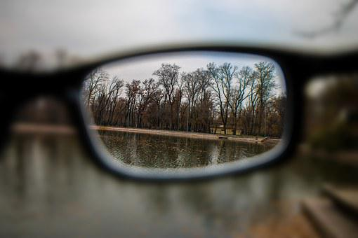 Glasses, World, The World Through Glasses, Park, Autumn