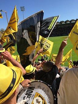 Rugby, Yellow, Rochelle La, Fans, Sector Fan, Game