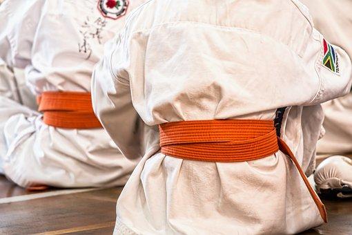 Karate, Martial Arts, Sport, Belt, Competition, Defense