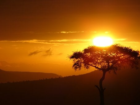 From Doubt, Sun Tree, Sunrise, Africa, Hope, Love