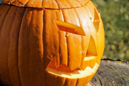 Pumpkin, Halloween, Autumn, Decoration, Deco
