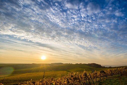 Landscape, Sky, Vineyards, Hill, Sun, Clouds, Nature