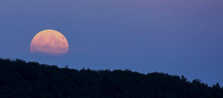Full Moon, Super Moon, Moonrise, Moon, Night, Twilight