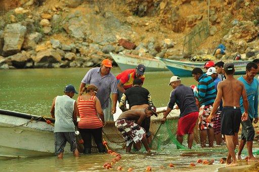 Fishermen, Fishing, Teamwork, Sea, Beach, Fishing Nets