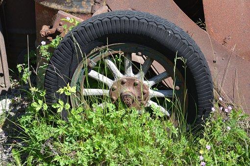 Nature, Spring, Tires, Veteran, Retro, Wood, Flowers