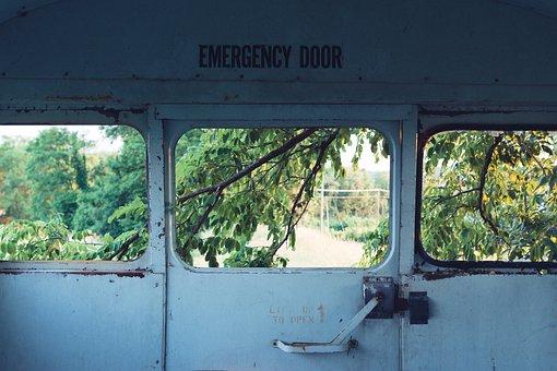 Branches, Door, Door Handle, Emergency Exit, Leaves
