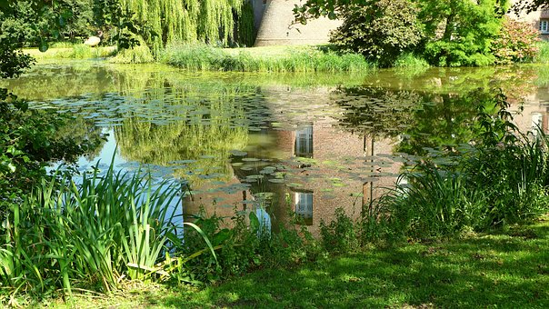Moated Castle, Moat, Nature