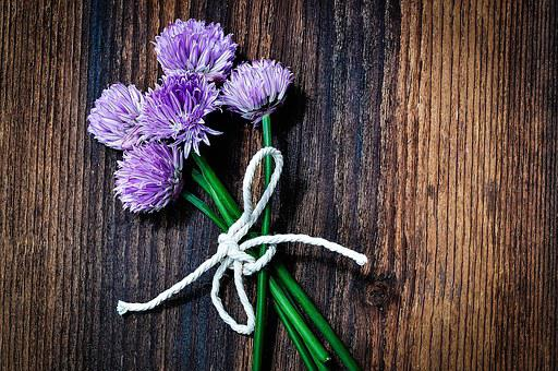 Chives, Flowers, Chive Flowers, Purple, Bound