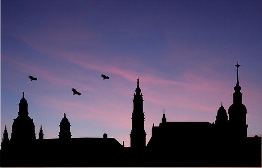 West, Sky, Birds, Nature, Paige, Silhouettes, City