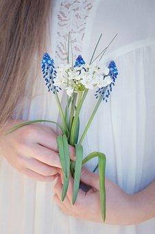 Flowers, Hyacinth, Hyacinthus, Asparagus Plant