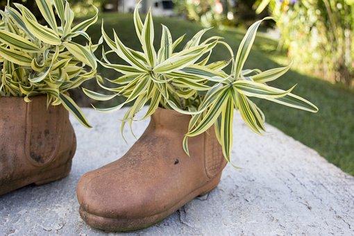 Shoe, Clay, Jug, Plant, Garnish, Party, Garden, Spring